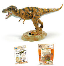GEOWORLD TYRANNOSAURUS REX JURASSIC HUNTERS MODEL DINOSAUR FIGURE & FACT CARDS