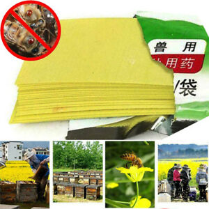 Varroa Strip Bee Mite Pro Acaricide Killing Beekeeping Pest Control Set Insects