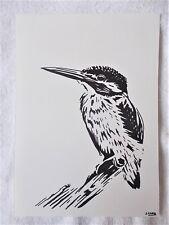 A4 Bolígrafo Marcador de arte dibujo pájaro Martín Pescador de animales B Cartel