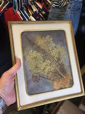 8x10 Framed Vintage Pressed Floral Piece Free Shipping!