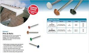 POLYTOP PLASTIC HEADED STEEL NAILS PINS UPVC FASCIA SOFFIT CLADDING 100 250 pcs
