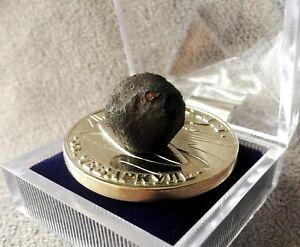 Newspaper & UFO coin medal & Chelyabinsk meteorite 2.6g from Челябинск, Russia