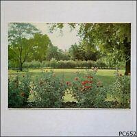 Benalla Vic Rose Gardens Rose Series No. 1892 Postcard (P652)