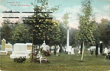 A View of Forest Hill Cemetery, Fredonia NY 1910