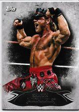 Verzamelingen Verzamelkaarten, ruilkaarten 1988 Wonderama NWA #175 The Four Horsemen Wrestling Card