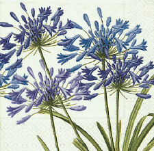 Agapanthus Floral Lunch luxury traditional paper table napkins 20 in pack