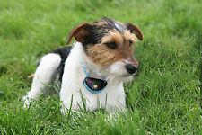 Eyenimal DELUXE SPRAY NO BARK DOG NOBARK SPRBARK BLACK OR WHITE LEMON