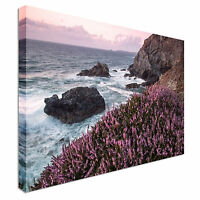 Coastal path in cornwall uk Canvas Wall Art Picture Print