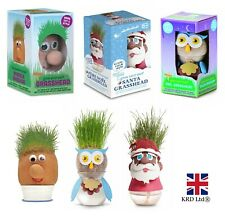 Grow Your Own GRASSHEAD Kids Grass Head Christmas Gift Stocking Filler Toy UK