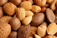 Mixed Nuts in Shell  Almonds, Brazil Nuts, Hazelnuts Pecans and Walnuts 3 lbs