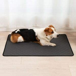 Anti-slip Pet Dog Urine Pad Dog Training Pee Mat Puppy Travel Car Cushion Carpet