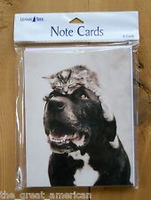8 Leanin Tree Note Cards Cat Sitting on Dog's Head - by Rachael Hale Made in USA
