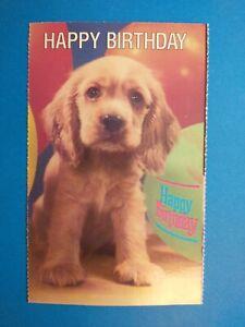 Dog, cute dog! Happy Birthday PC Postcard