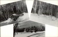 Kingfield ME Deer Farm Multi-View Old Postcard