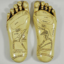 Reflexology Feet Figurine Statue Ornament Wall Plaque Resin Sculpture NEW IN