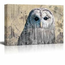 Double Exposure Close Up of a Grey Barred Owl - Canvas Art - 12x18 inches