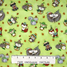 Nursery & Baby Fabric - Hedgehugs Hedgehog Animal Toss Green - Henry Glass YARD