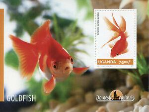 Uganda Fish Stamps 2014 MNH Goldfish Domestic Animals 1v S/S