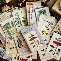 30Pcs/Set POSTCARDS 93MMx143MM Vintage Butterfly Mushroom Plants Card DIY Decor