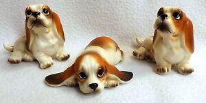 Adorable Trio of Basset Hound Puppies