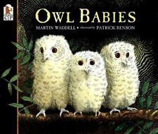 OWL BABIES (Brand New Paperback) Martin Waddell