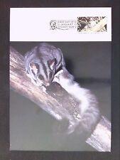 AUSTRALIA MK 1992 FAUNA EICHHÖRNCHEN SQUIRREL GLIDER MAXIMUM CARD MC CM d1720