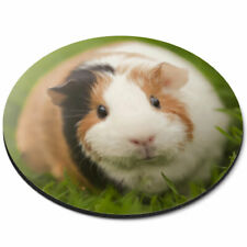 Round Mouse Mat - Tri Coloured Guinea Pig Pet Rodent Office Gift #15969