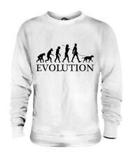 POINTING GRIFFON EVOLUTION OF MAN UNISEX SWEATER MENS WOMENS LADIES DOG GIFT