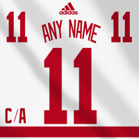 Detroit Red Wings Adidas White Jersey Any Name Any Number Pro Lettering Kit