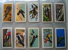 Brooke Bond Canada Full Set Of 48 Cards CANADIAN / AMERICAN SONGBIRDS