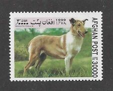 Dog Art Full Body Portrait Postage Stamp Smooth Coated Collie Afghanistan Mnh