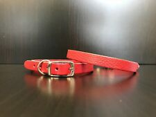 Chihuahua Yorkshire Terrier Pomeranian Puppy Leather Collar RASPBERRY