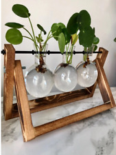 Hanging Glass Vase Hanging Pot Wall Planter Hydroponic Container
