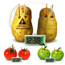 Potato Clock Science Experiment Kit Children Kid Educational Toy DIY Material