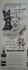 1960 Black & White Scotch Scottish Terriers Scotties Dogs Step Friendly World Ad