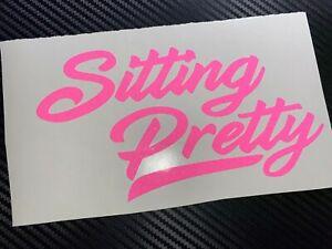PINK GLITTER Sitting Pretty Car Sticker Decal JDM VDUB Stance Low Bags Static