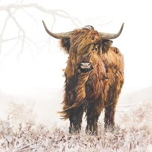 4 x Single Paper Napkins/3 Ply/Decoupage/Craft/Cow/Highland Cattle/Highlander