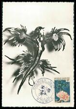 Novelle Caledonie Mk 1959 acuario glaucus Anemone Carte maximum card mc cm ay56