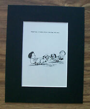 Dog Child Cartoon Print Norman Thelwell Avoid A Fight Bookplate 1964 8x10 Matted