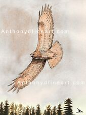 """ORIGINAL ACEO PAINTING """"RED TAILED HAWK"""" COTTAGE, LANDSCAPE PRINT By Anthony D"""