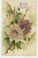 C. Klein, Flowers, Chrysanthemums Tuck 6123 Chromo Art Postcard, C025
