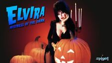Hollywood Celebrity Art Photo Poster:  ELVIRA |24 inch by 36 inch| 01 80'S