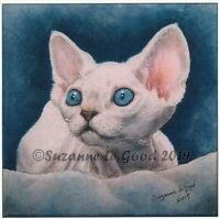 Devon Rex cat kitten art large print from original painting by Suzanne Le Good