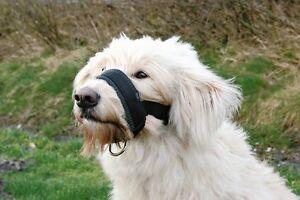 Trixie Dog Soft Nylon Dog Head Collar Muzzle Loop Large - 3 Sizes: L XL XXL
