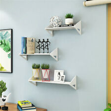 Wall-Mounted Floating Wall Shelf  Rack Storage Seamless Display Home Decoration
