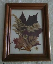 Pressed Leaves & Flowers in a Small Wooden Frame.