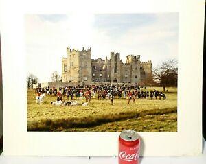 Vintage Real Colour Photograph RABY CASTLE Hunt Gathering 50 x 39cm FOX HOUNDS