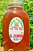 RAW HONEY CLOVER 5 LBS / 2268g 100% PURE RAW LIGHTLY FILTERED HONEY  In Glass