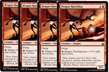 4x Dragon Hatchling  -NM- Battlebond MTG Red Common