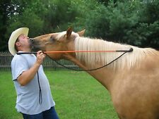 THOMEY EQUINE HANDY CARROT STICK FITS PARELLI TRAINING ~ Orange